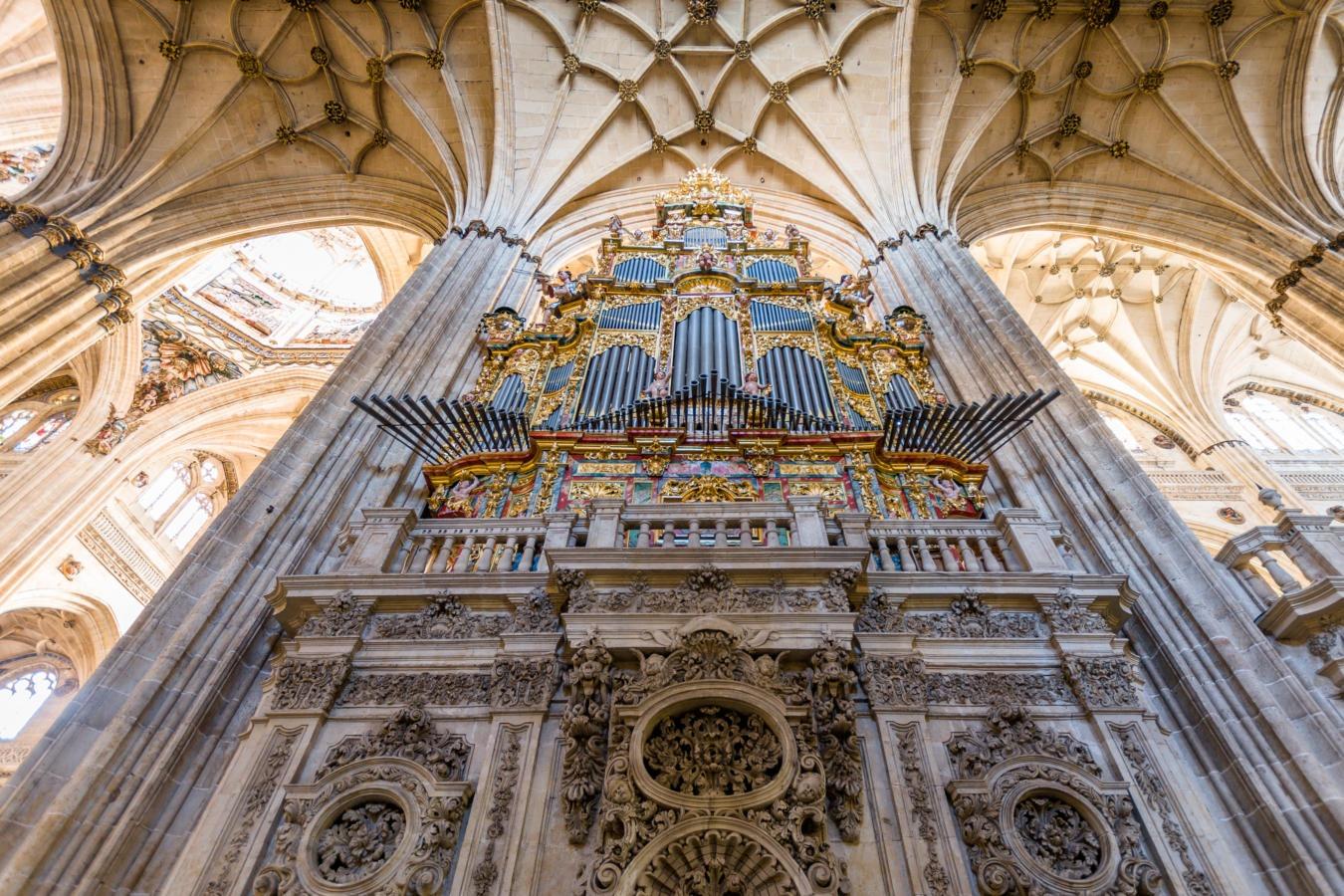 Concierto de órgano de Luis Dalda, en la Catedral Nueva